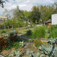 Jefferson Avenue Community Garden - Church Hill, Richmond, VA., Ричмонд