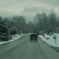 Forest Springs Drive, Стьюартс-Драфт