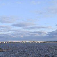 Downing Bridge, Таппаханнок