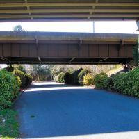 VIRGINIA: HAMPTON: view down South Boxwood Street under I-64, Хэмптон