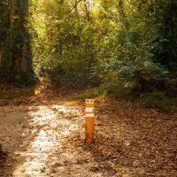 Rivanna Trail, Чарлоттесвилл