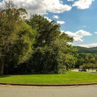 Monticello Ave & Druid Ave, Чарлоттесвилл