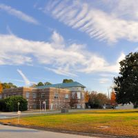 VIRGINIA: CITY OF CHESAPEAKE: Public Library, 298 Cedar Road, Чесапик