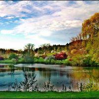 Obojeno jezero...Greenfield Park (R), Брукфилд