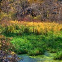 Colorful Autumn Pond along the Sugar River Bike Path,  WI, Олбани