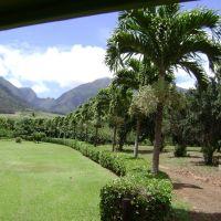 Maui Plantation, Ваикапу
