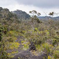 Kaumana Trail, Ваилуку