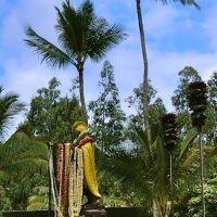 King Kamehameha 1st, Капаау