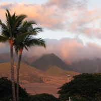 Hawaii - Maui, Кахулуи