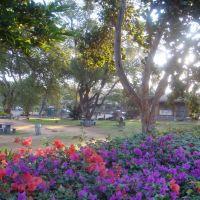 Kalepolepo Beach Park, Kihei, Maui, Кихей