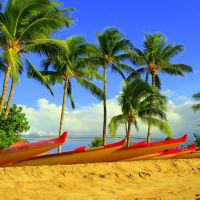 Kihei Maui Canoe club ,Vaas at the ready, Кихей