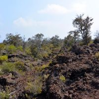 2014-05-09 Geocaching in A-a lava flows by the Mauna Loa Observatory Road, Лиху