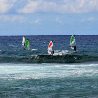 Windsurfers on Maui, Паия