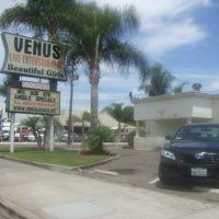 Venus Mens Lounge (Live Entertainment and Beautiful Girls), Стантон