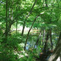 Hidden Pond, Талливилл