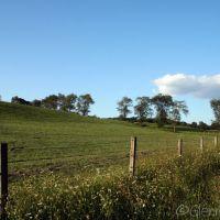 Rural Legacy, Талливилл