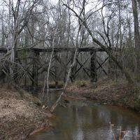 Abandoned old trestle deep in the woods., Вилмингтон-Айленд