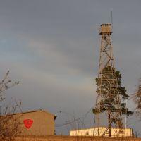 Georgia Forestry Commissions Fire tower., Вилмингтон-Айленд