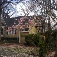 Colonial Hills Neighborhood, Ист-Пойнт