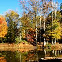 Faithful reflections of Autumn wander along Tobbler Creek., Макон