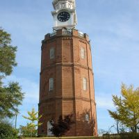Water Tower disguised as a Clock Tower, Ром