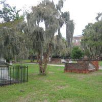 Colonial Park Cemetery, Savannah, Саванна