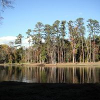 Thomasville, GA - Cherokee Lake - November 2010, Томасвилл