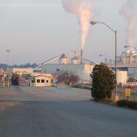 OSB Board Factory, Форт Оглеторп