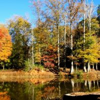Faithful reflections of Autumn wander along Tobbler Creek., Форт Оглеторп