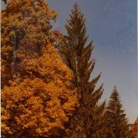 Fall, Бакханнон