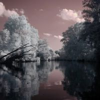 "Buckhannon River ""In Infrared"", Бакханнон"