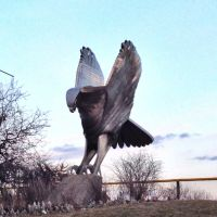 Hawk Statue On University Of Iowa Campus, Аледо