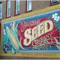 Belvidere Seed Company - Belvidere, IL City of Murals, Белвидер