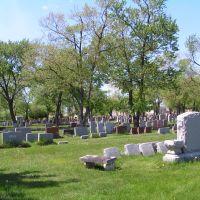 waldheim Cemetery, Бервин