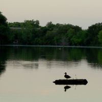 Kauffman Lake - Champaign, Illinois, Бондвилл