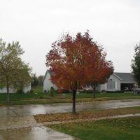 October-21-2009, Бондвилл