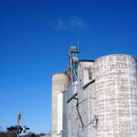 Mahomet Grain Silo, Бондвилл