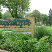Lombard - Westmore Woods, Вилла-Парк