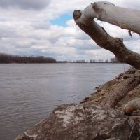 Missouri River, Вуд Ривер