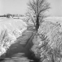 Small stream, Vermilion County, IL, Вхитон