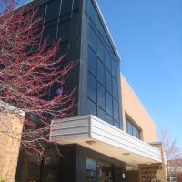Downers Grove Public Library, Даунерс-Гров