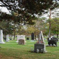 All Saints Cemetery, Дес-Плайнс