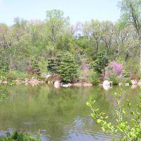 Anderson Japanese Gardens, Евергрин Парк
