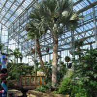 Nicholas Conservatory, Евергрин Парк
