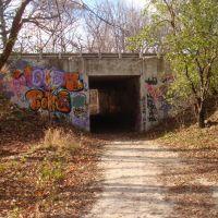 underground passage, Елмвуд Парк