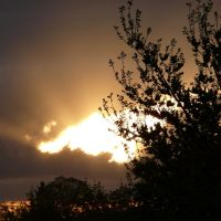 Sunset, Елмвуд Парк