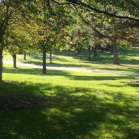 Wilder Park, Елмхурст