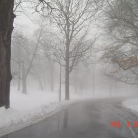 Rainny day, foggy day, snowy day and Monday!, Кантон