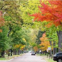 Wilmette in the fall of 2009, Кенилворт