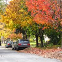 Winnetka, IL- Fall Colors, Кенилворт